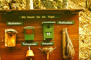 Fischbach in vergangener Zeit_85
