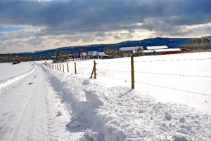 Fischbach tief verschneit_12