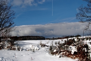 Fischbach tief verschneit_18