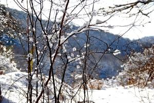 Fischbach tief verschneit_29