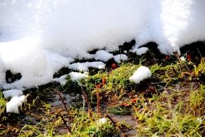 Fischbach tief verschneit_32