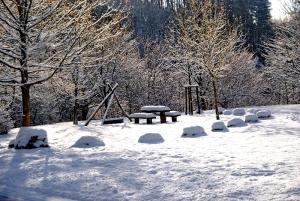 Fischbach tief verschneit_33