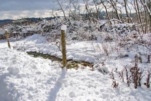 Fischbach tief verschneit_38