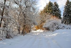 Fischbach tief verschneit_44