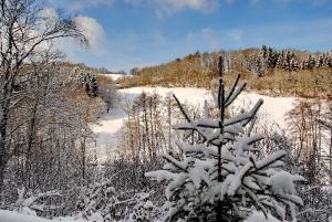 Fischbach tief verschneit_64