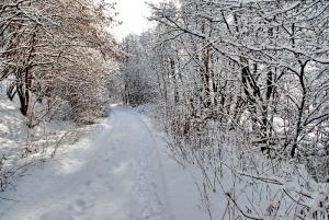 Fischbach tief verschneit_70