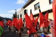 Fischbacher Carneval Verein_15