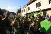 Fischbacher Carneval Verein_47