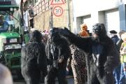 Fischbacher Carneval Verein_56